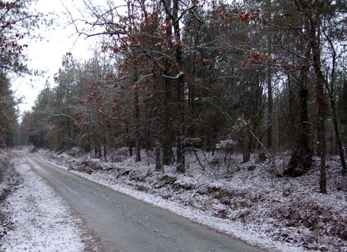 Snow012009
